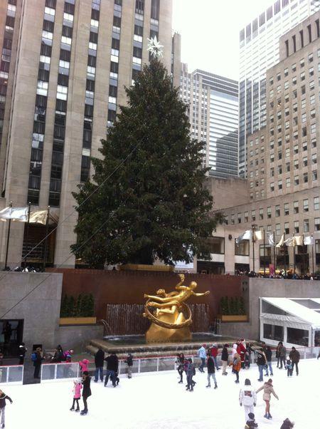Rockefeller Center & Tree