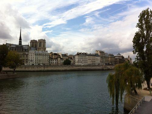 Seine and Ile de la Cité
