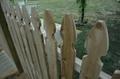 Fencecloseup